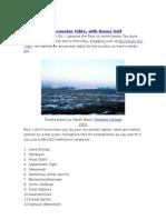 Tundra Encounter Table