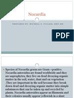 Nocardia, Bordetella, Haemophilus