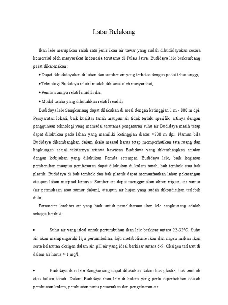 Proposal Usaha Lele Print