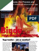 Bindu No. 14