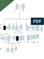 genealogia.ppt