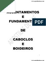Assentamentos de Boiadeiros e Caboclos (4)