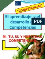 Guia de Competencias 2010 Rocota