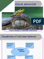 Individual Behavior in an Organization