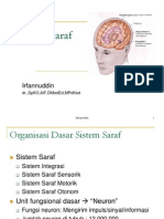 9.Saraf