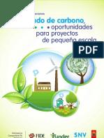 Mercado de Carbono-final