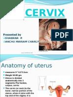 Path CA Cervix