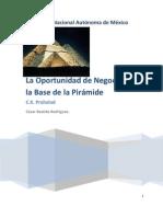 Oportunidad de Negocios en La Base de La Piramide