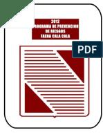 Programa Prevencion de Riesgos Explicativo