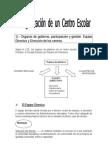 Organizacion Florencia