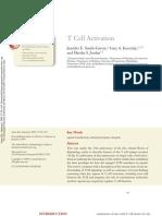Activación de cels T
