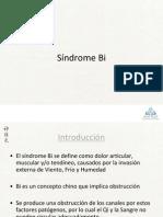 Síndrome Bi 2013