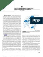 Anato Fisiolog y Clinica Higado - Masso
