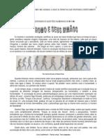 Fidesa 2010 Iec Tecnico Em Pesquisa Biomedica Micologia Medica Prova