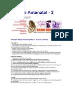 Asuhan Antenatal 2