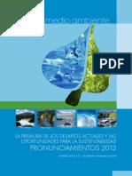 Pronunciamientos Agua & Medio Ambiente 2013