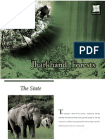 Jharkhand Forests