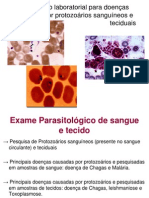Diagnóstico+laboratorial+de+protozoários+sanguíneos+e+teciduais