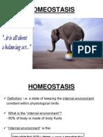 HOMEOSTASIS -Lecture (Human Biology)