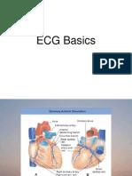 EKG Basic 1