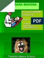 Histologia de La Cavidaad Orall