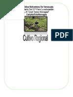 Copia de Cultivo Regional