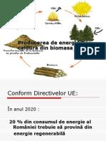 Curs Nr. Biomasa