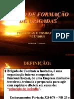 combateaincndios-110807185300-phpapp02