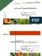 Utilizacion de Dendroflexometro