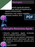 Meningitis Estre