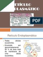 SEMINÁRIO RET. ENDOPLASMÁTICO - parte Bruna (1)