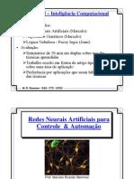 Inteligencia Computacional RNA