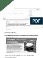 PRUEBA  CIENCIAS NATURALES 5° AGOSTO FILA A CORREGIDA (1)
