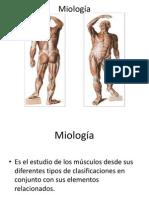 Miologia I