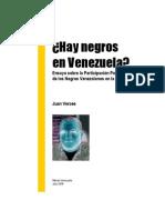 Hay Negros en Venezuela