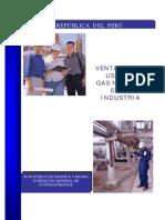 Ventajas Del Uso Del Gas Natural en La Industria