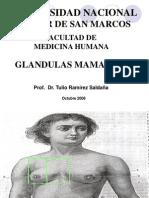 Glandula Mamaria Medicina