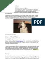 Vind de Hond en Verdien 20