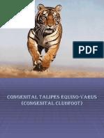 Congenital Talipes Equino-Varus