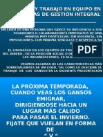 Liderazgo y Trabajo en Equipo en los SGI (Gonzalo Narváez B)