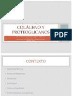 Colágeno y Proteoglicanos Terminada