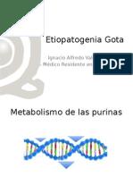 Clase Etiopatogenia Gota