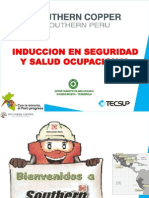 Induccion SPCC TOQUEPALA v1 (en Revision)