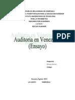 La Auditoria en Venezuela Ensayo 02 Iutepi