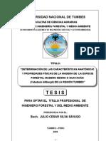 DETERMINACIÓN DE LAS CARACTERÍSTICAS ANATÓMICAS Y PROPIEDADES FÍSICAS DE LA MADERA