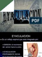 EYACULACION.