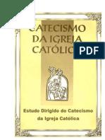 Estudo Catecismo  1 tema nº 26-49