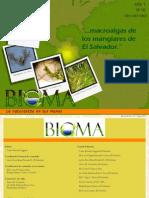 Algas de Manglar de El Salvador (Bioma)