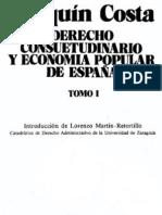 Joaquin Costa - Derecho consuetudinario y economía popular de España (Tomo 1)