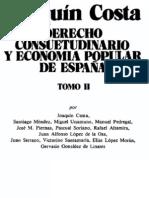 Joaquin Costa - Derecho consuetudinario y economía popular de España (Tomo 2)